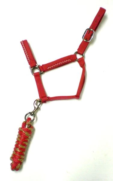 Nylon Halter and Lead