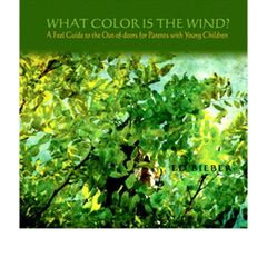 What Color Is the Wind? by Ed Bieber
