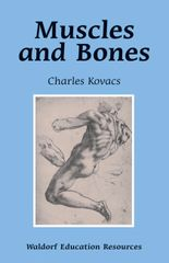 Muscles and Bones Waldorf Education Resources Charles Kovacs