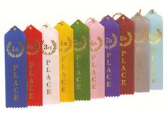 2X8 RIBBON - RIBBONS