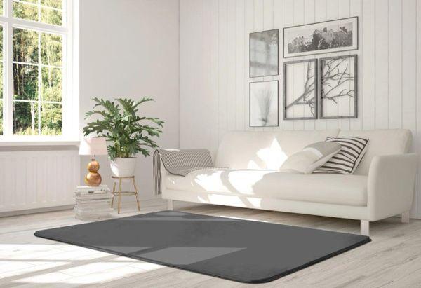 Velvet silver rug