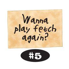 Wanna play fetch again?