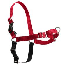 Easy Walk Harness in Red