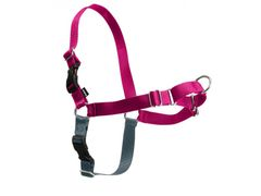 Easy Walk Harness in Pink