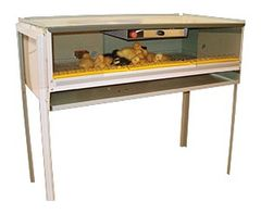 CHICKTEC ELECTRIC POULTRY BROODER