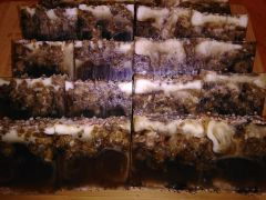 Lavender & Sea Salt Black Soap