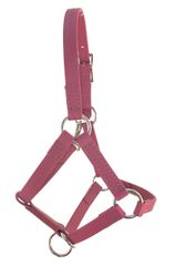 Biothane / BETA Mini Halter with Stainless Steel Hardware