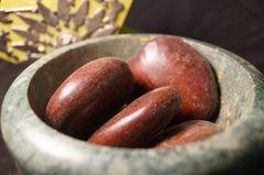 5 Seeds Entada rheedii African Dream Herb