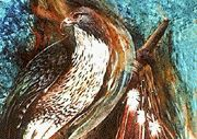 """Red Feather Red Clay"" - 20 x 30 Limited Edition Giclee Prints on Canvas"
