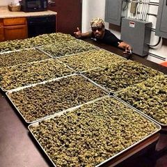 CannabisCookingSchool.com
