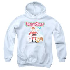 Christmas Santa Claus is Coming to Town Animal Friends Youth Pull-Over Hoodie