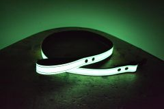 Glow Dog Leash