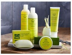 LEMONGRASS & TEA TREE COLLECTION/ 12-14 days for Delivery.