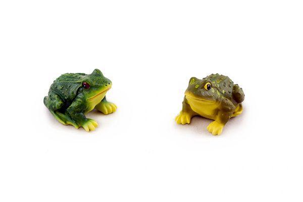 FA119 Mini Frog (12 PCS SET)