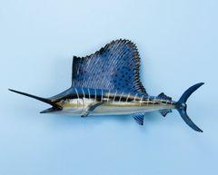 """TT400 Sailfish 23"""" Fish Mount"""