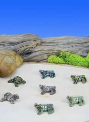 Mini Horned Toad (12 PC SET)