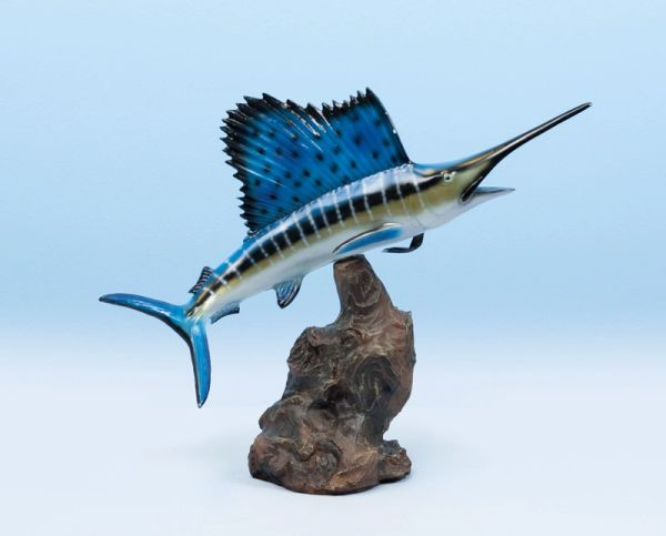 Sailfish 14""