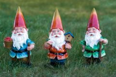 STR20 Gnome with Lantern (6 PC SET)