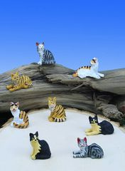 MCT100 Mini Short Hair Cats (12 PC SET)