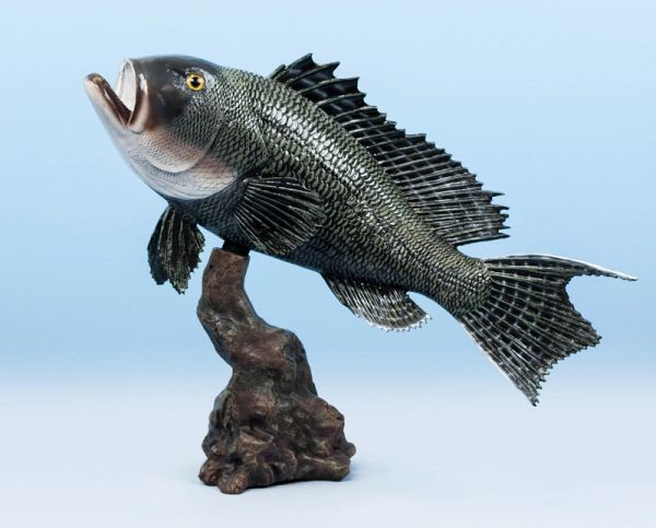 """TT230 Sea Bass 18"""""""