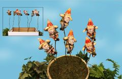 Gnome Plant Sticks w Free Display (12 PC SET)