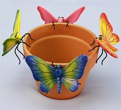PH430 Md Butterfly (12 PC SET)