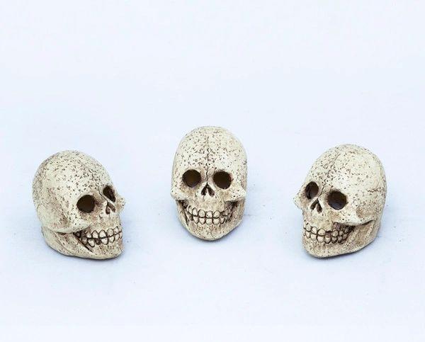 Light Up Skull with LED Light (12 PCS SET)