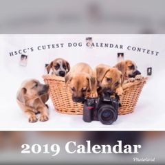 2019 HSCC Cutest Dog Calendar Order