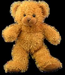 TEDDY MOUNTAIN Build A Bear Pack Large CARAMEL Bear