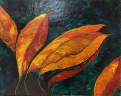 Mahogany Seeds I