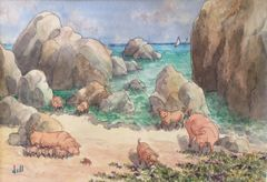 Pigs At The Baths