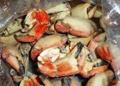 Caribbean Frozen Stone Crab, Abalone, Red Fish, Salmon, and Conch