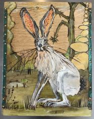 Box #5 - Black-Tailed Jackrabbit (Lepus californicus)