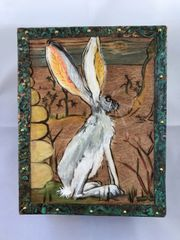 Box #4 - Desert Jackrabbit (Lepus californicus)