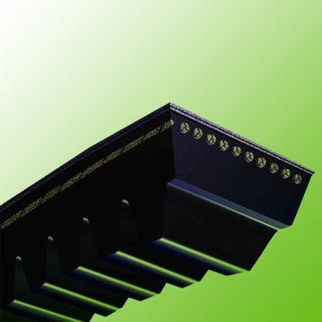"""Cogged Belt 1/2x43.5"""" AX43.5"""