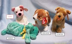 BEANIE BABIES: Ty Beanie Babies Collectible Bean Plush Dogs; CUPID, DIDDLEY, SIDE-KICKS, SCHNITZEL