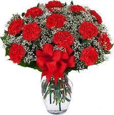 Dozen Carnations in Vase (Choose Color)