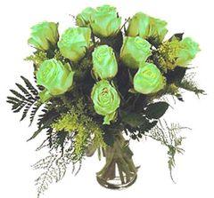 Dozen Green Roses