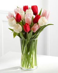 Tulip Arrangement (colors vary)
