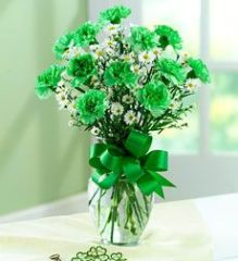 Dozen Green Carnations
