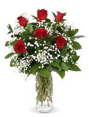 Valentine's 1/2 Dozen Red Roses