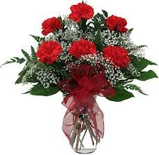 Red Carnations (half dozen)