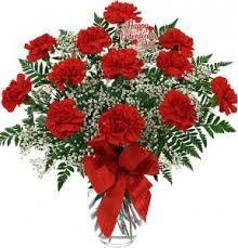 Sympathy Vase of Carnations