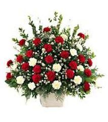 Traditional Mache Arrangement Red & WhiteCarnations