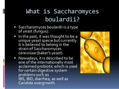 Saccharomyces Boulardii CANDIDA overgrowth IBS IBD DIARRHEA