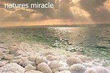 DEAD SEA SALTS 2 LB 4 LB 10 LB Psorasis Eczema Detox Baths