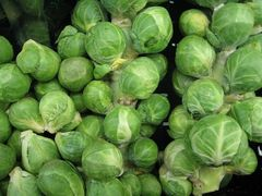 Brussels Sprouts - Groninger