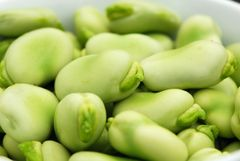 Broad Bean - Aquadulce