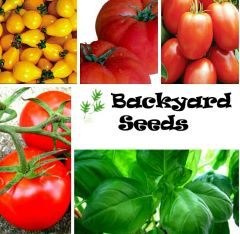 Tomato and Basil Seeds Variety Pack: All the favourites!