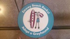 2010 Dewey Beach Rocks Car Magnet